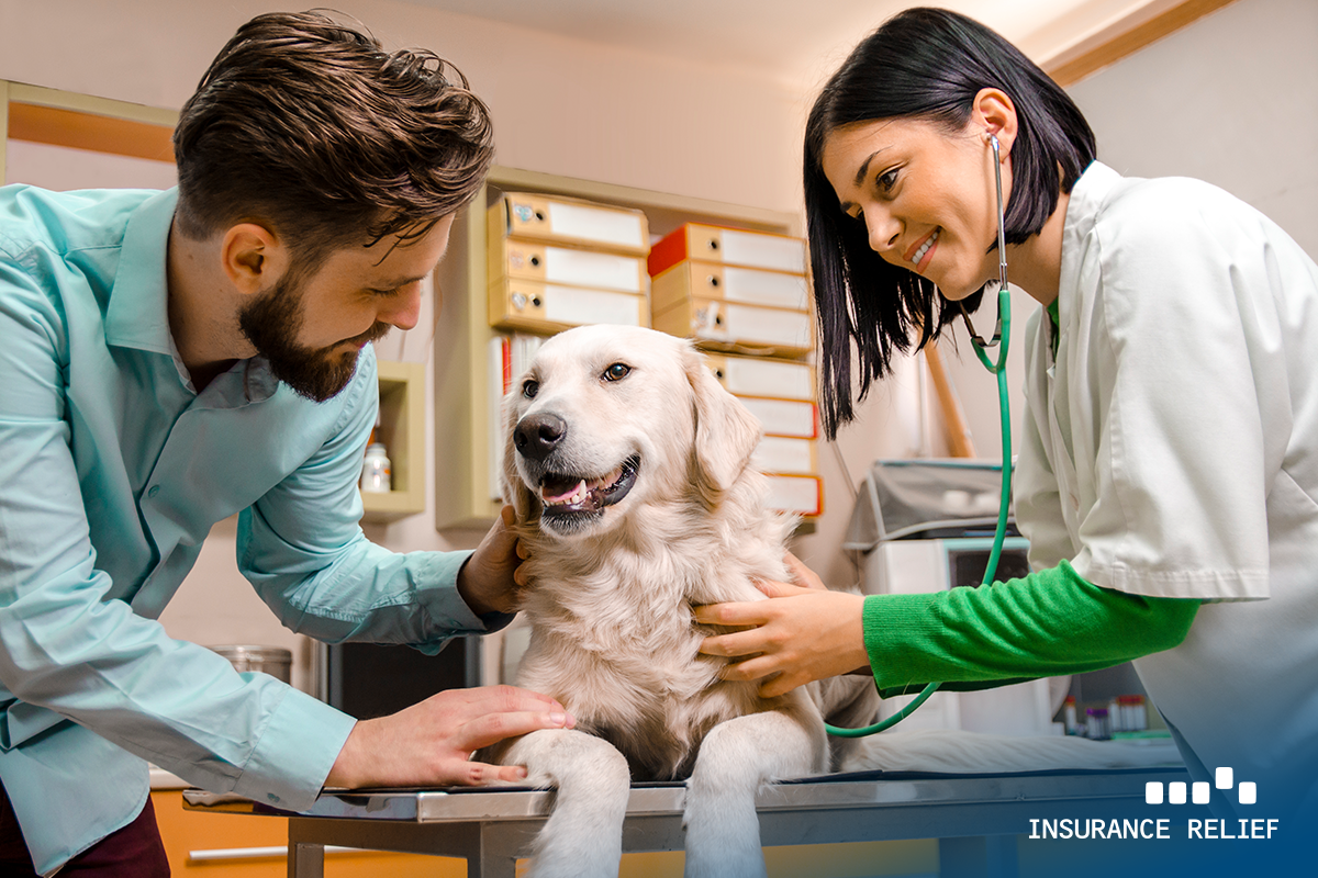 Pet-Insurance-Boom